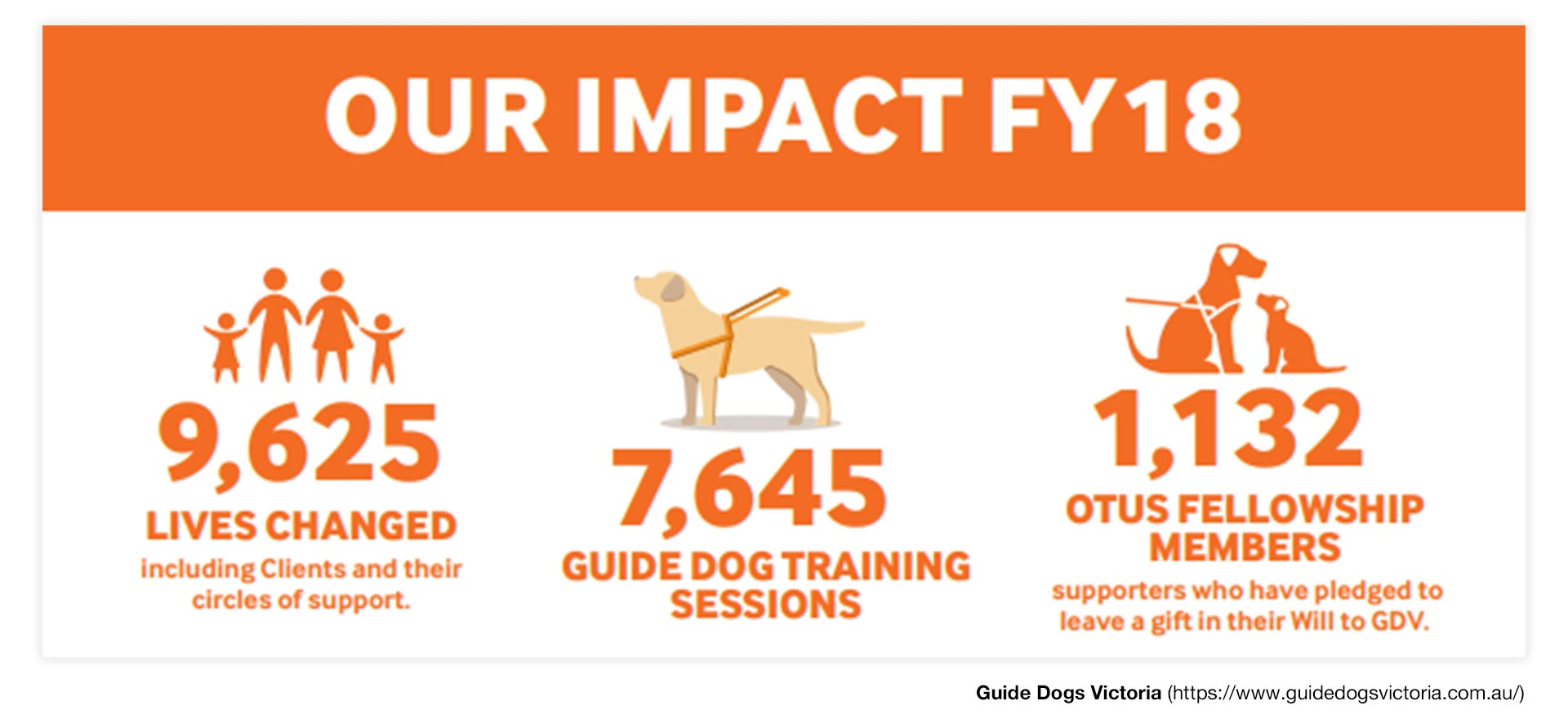7,645 Guide Dogs Training Session